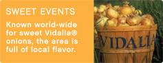 Sweet Events in Toombs County - Vidalia Onions